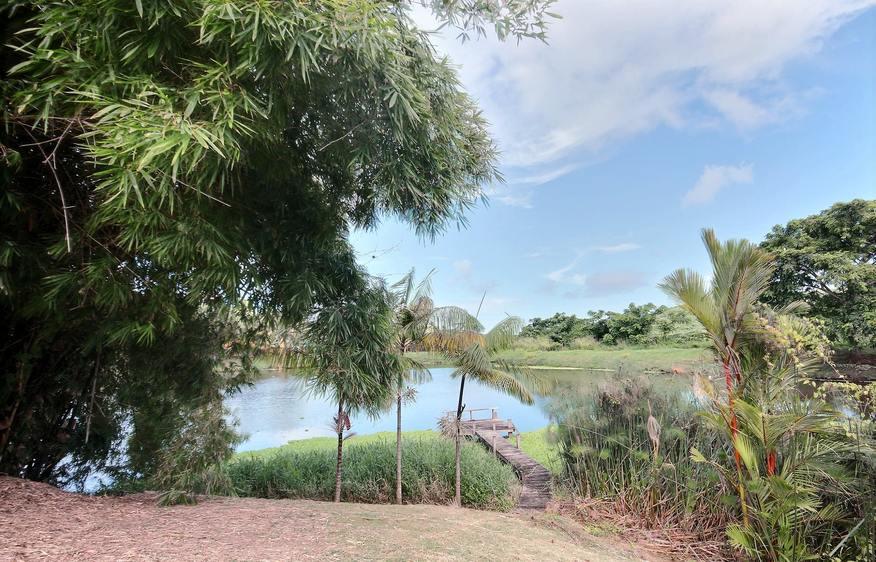 location Villa Colibri Vauclin Martinique