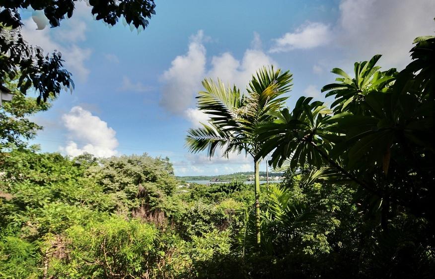 location Cottage Amalia François Martinique