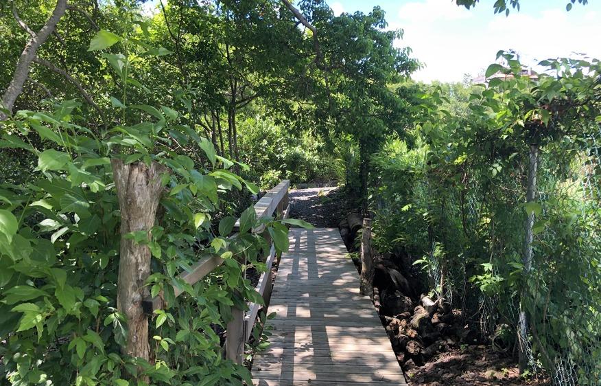 location Villa Kavich Trois-Ilets Martinique