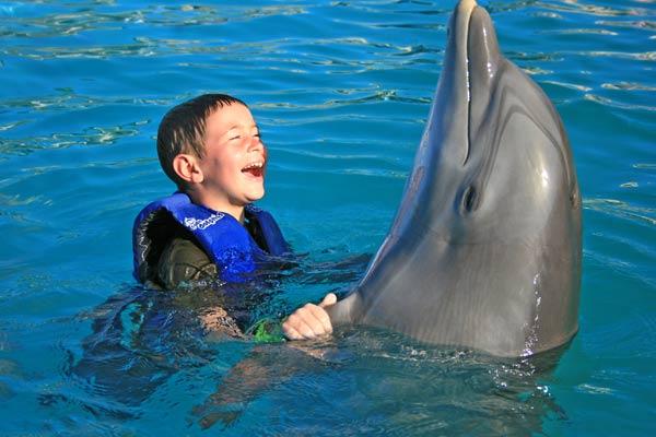 Dolphin kids excursionpass dolphin kids voltagebd Images