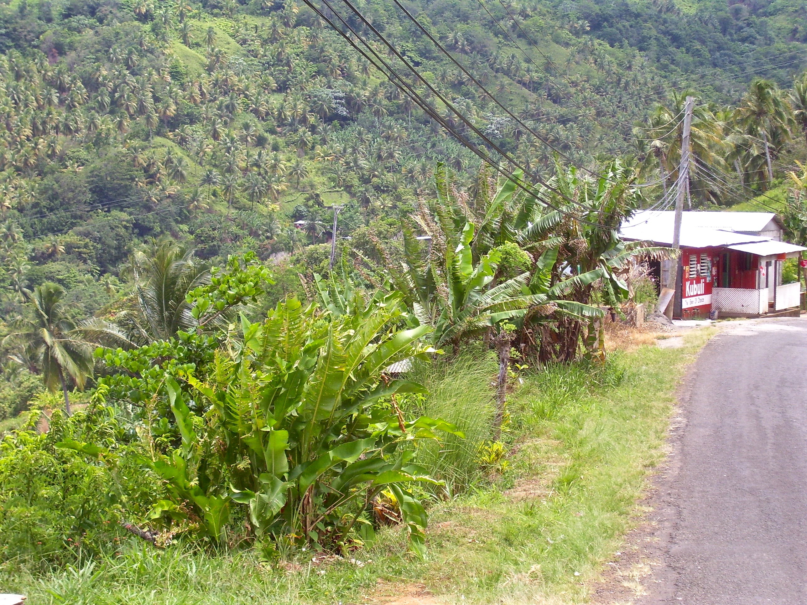 property in Dominica