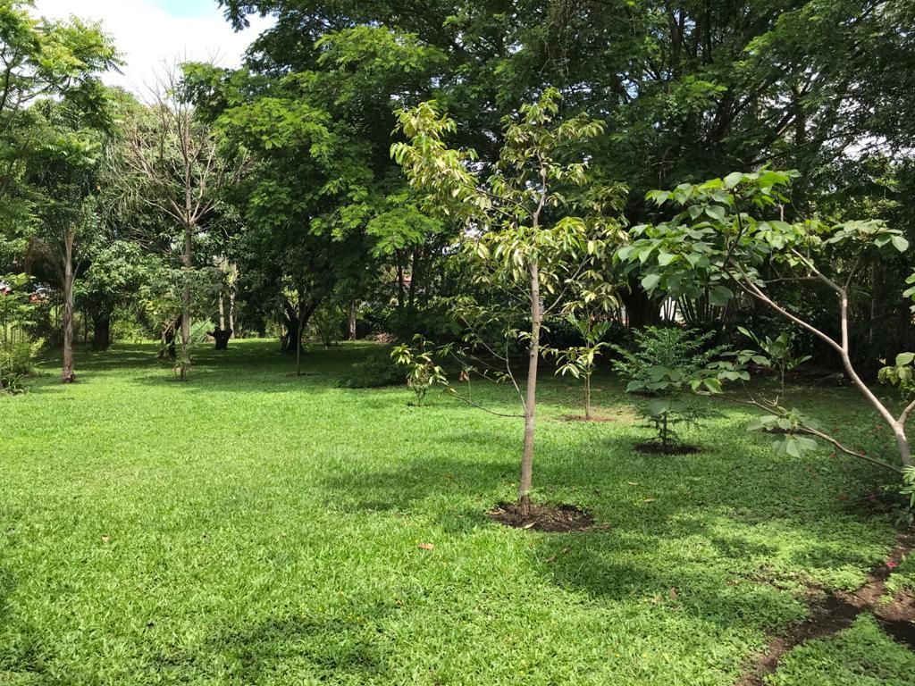 property in Costa Rica
