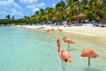Pacote Aruba Econômico