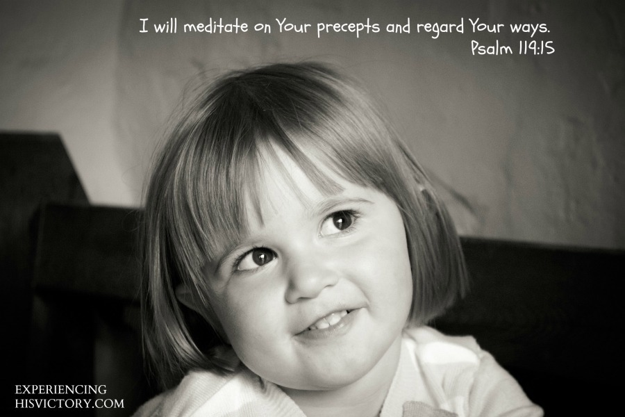 I will meditate on Your precepts and regard Your ways. - Psalm 119:15