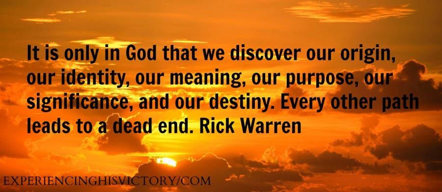 It is only in God that we discover our origin, our identity, our meaning, our purpose, our significance, and our destiny. Every other path leads to a dead end. Rick Warren