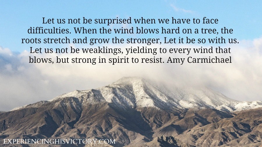 Let us not be surprised when we have to face difficulties. When the wind blows hard on a tree, the roots stretch and grow the stronger, Let it be so with us. Let us not be weaklings, yielding to every wind that blows, but strong in spirit to resist. Amy Carmichael