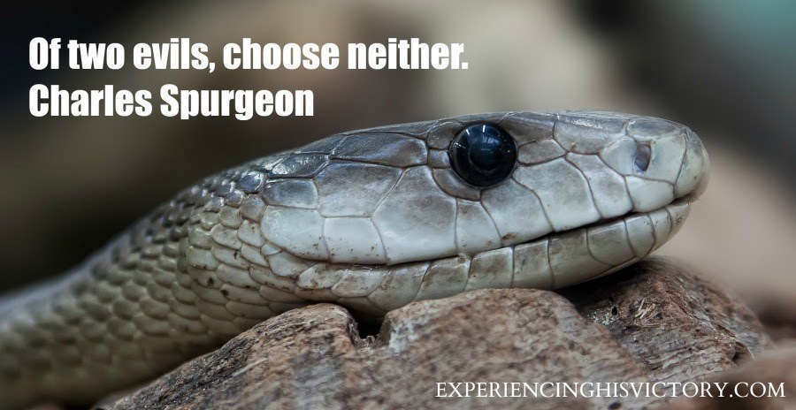 Of two evils, choose neither. Charles Spurgeon