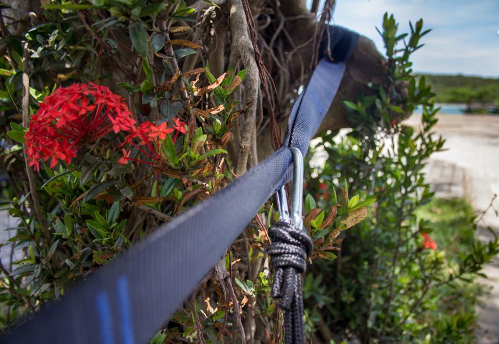 Hammock tree strap tip #4 hammock tree hugger straps and carabiner