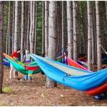 hammock music festival