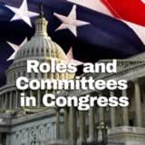 Civics The Federal Government Roles and Committees in Congress