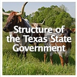 Reconstruction and Frontiers Structure of the Texas State Government