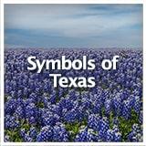 Texas Studies Texas Culture Symbols of Texas