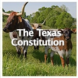 Reconstruction and Frontiers The Texas Constitution