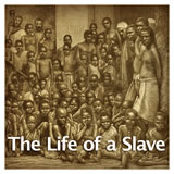 US History European Colonization The Life of a Slave