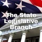 Civics State and Local Governments The State Legislative Branch