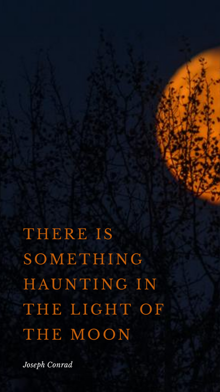 There is something haunting in the light of the moon - Halloween Quote