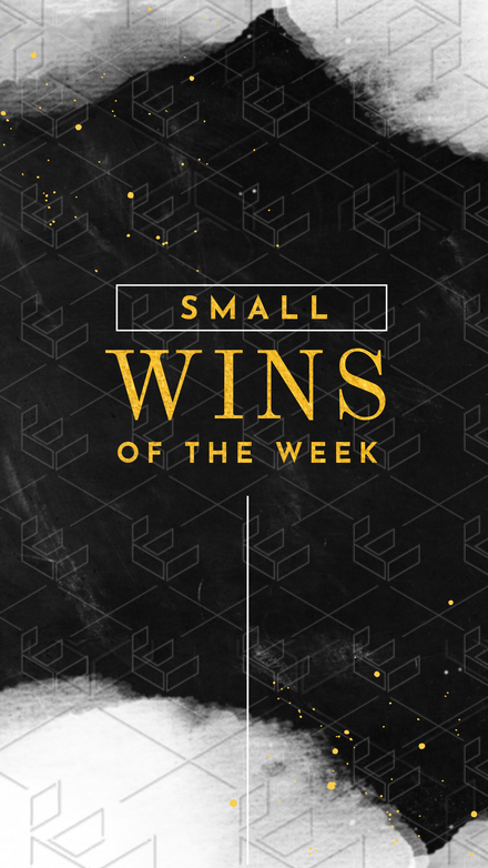 Small Wins of the Week Instagram Story Template