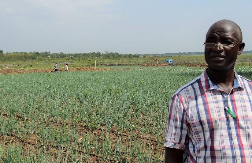 District | UNDP Climate Change Adaptation
