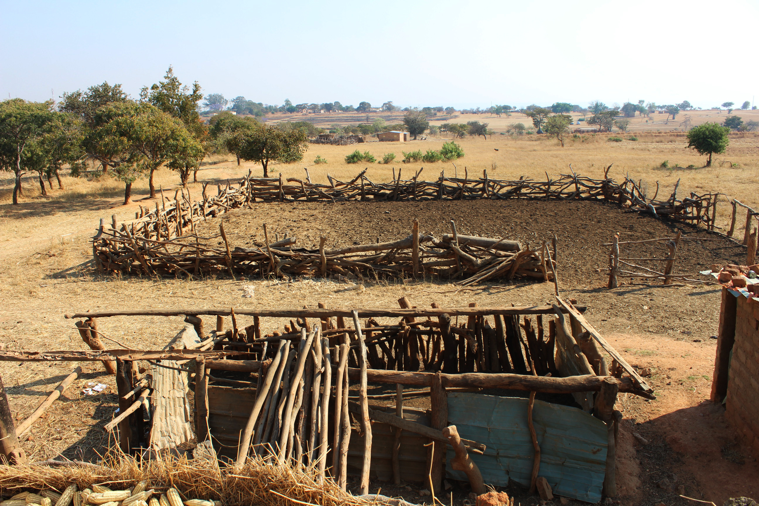 Agriculture/Food Security | UNDP Climate Change Adaptation