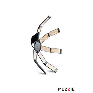 Hudson Spider Mozzie