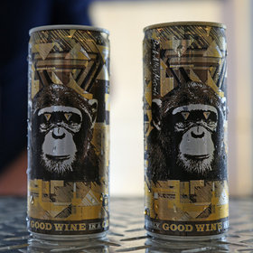 Infinite monkey theorem article