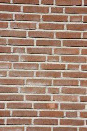 Brick mortar article