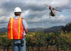 Vineyard drones art g0rvb0kk 1vineyard drones jpeg 0ce36 jpg article