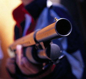 Shotgun article