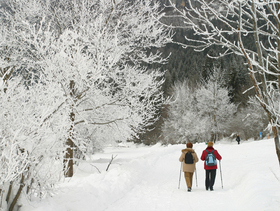1012331 tips for being prepared for winter storms article