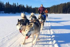 Tabea flotron dog sledding 590 article