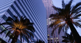 25beautifulcitieslosangelescaliforniapalmtrees 5282014 212214 panoramic article