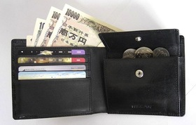 Wallet article