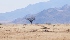 Namibia article