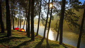 Camping1 article