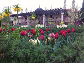 Missouri botanical garden article