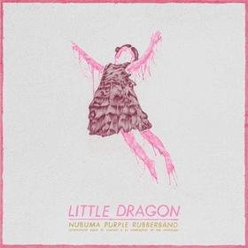 Littledragon article