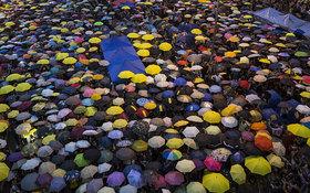 Umbrellas 3090795b article