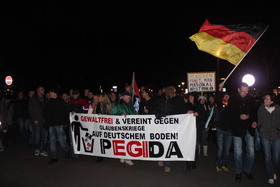 Flag sign   pegida article