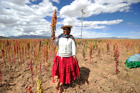 Bolivia additional photos 3 article
