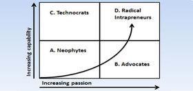 Radical intrapreneurs article
