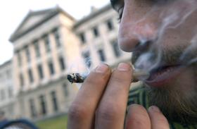 Uruguay marijuana 4 article