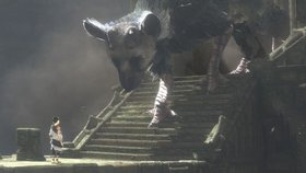 The last guardian article