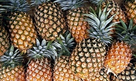 Group of pineapples 006 article