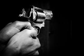 Gunshot article