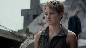 Insurgent article
