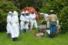 Beekeepers.jpg1427902440382407615 article