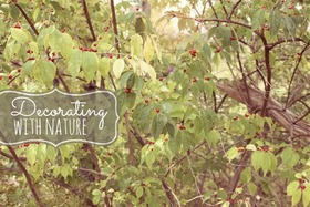 Decoratingwithnatureheader article
