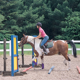 Buying first horse 20jpg article