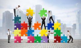 Collaborative organization article