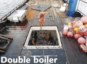 Doubleboiler article